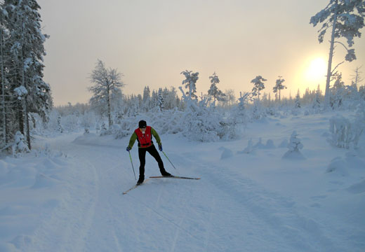 Skiing in Harsa